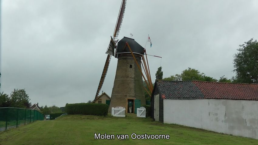 Molen_Oostvoorne_0