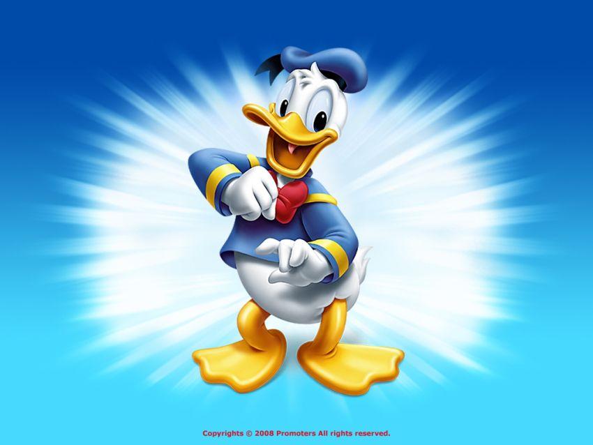Donald-Duck-Wallpaper-disney-6638047-850