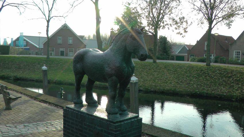 Paard_Heenvliet