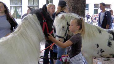 Paardenmarkt Heenvliet2017